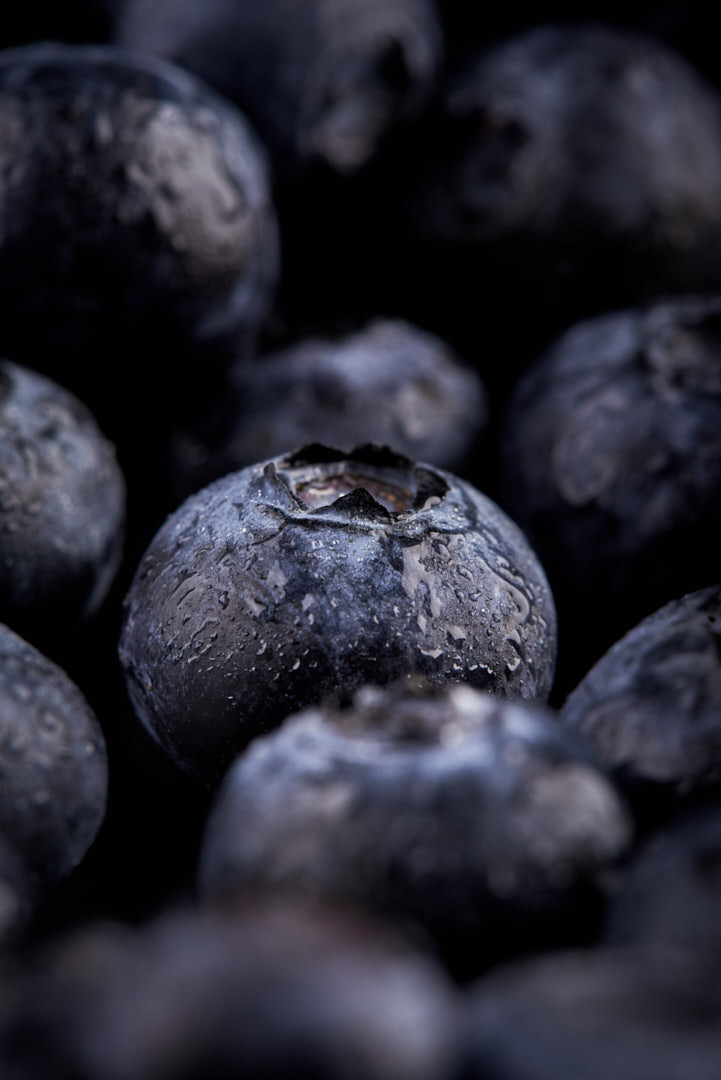Moody Food photography of juicy locally grown organic blueberries with condensation Photographed by Brandon Marsh Photography